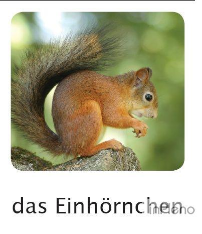 Изучаю немецкий